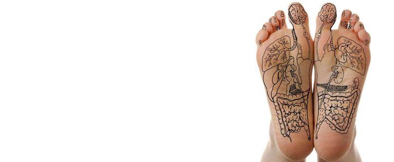 Bild Massage-Fuss-Reflexzonen-Massage
